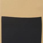 Alberto_Burri-Museo_di_Capodimonte-Serigrafia_su_cartone_pressato_(cellotex)-89.5x64_cm-1978