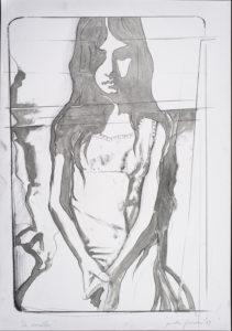 giosetta_fioroni-la_sorella-1969-vernice_alluminio_e_matita_su_carta-100x70_cm