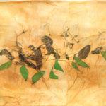 Basilico, 2017, olio, basilico e collage su carta, cm 50x70