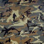 Andy_Warhol-Camouflage-1987-Serigrafia-96.5x95.5_cm