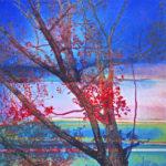 Yale Epstein - Tree 01 - tecnica mista su carta - 30,48x30,48 cm